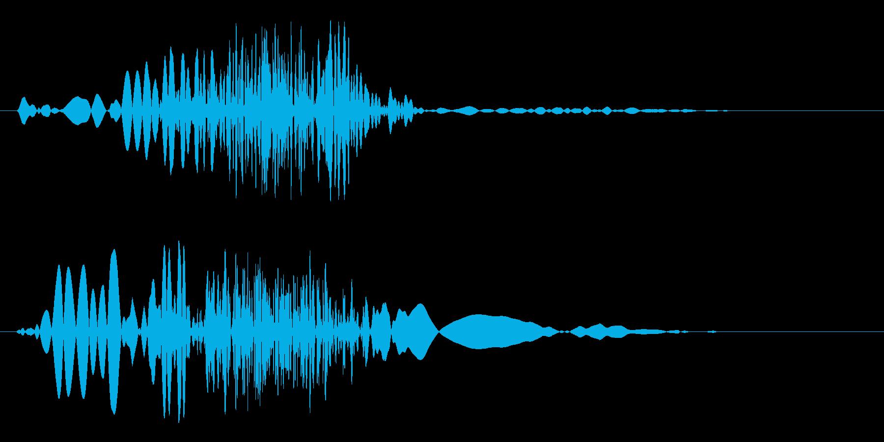 ビュッ(風を切るような短い音)の再生済みの波形