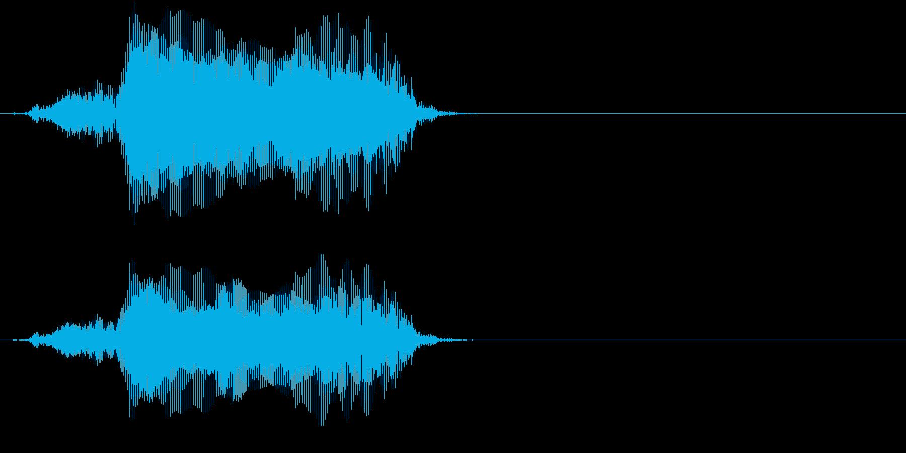 「猫の鳴き声011」ごろにゃーの再生済みの波形