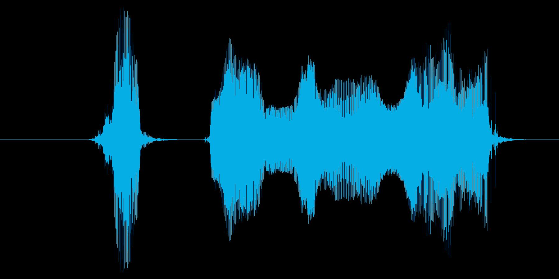 ハッピーニューイヤーの再生済みの波形