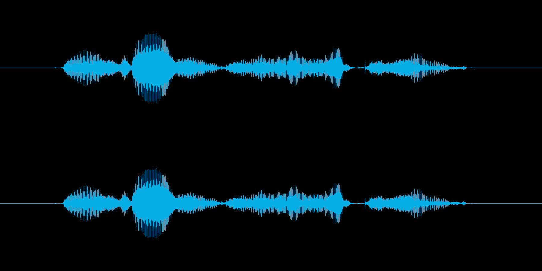 【西暦】2018年の再生済みの波形