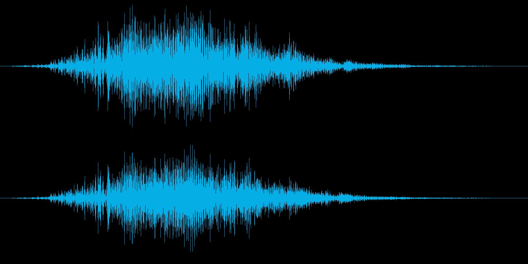 アオサギの鳴き声(飛翔中によく鳴く)の再生済みの波形