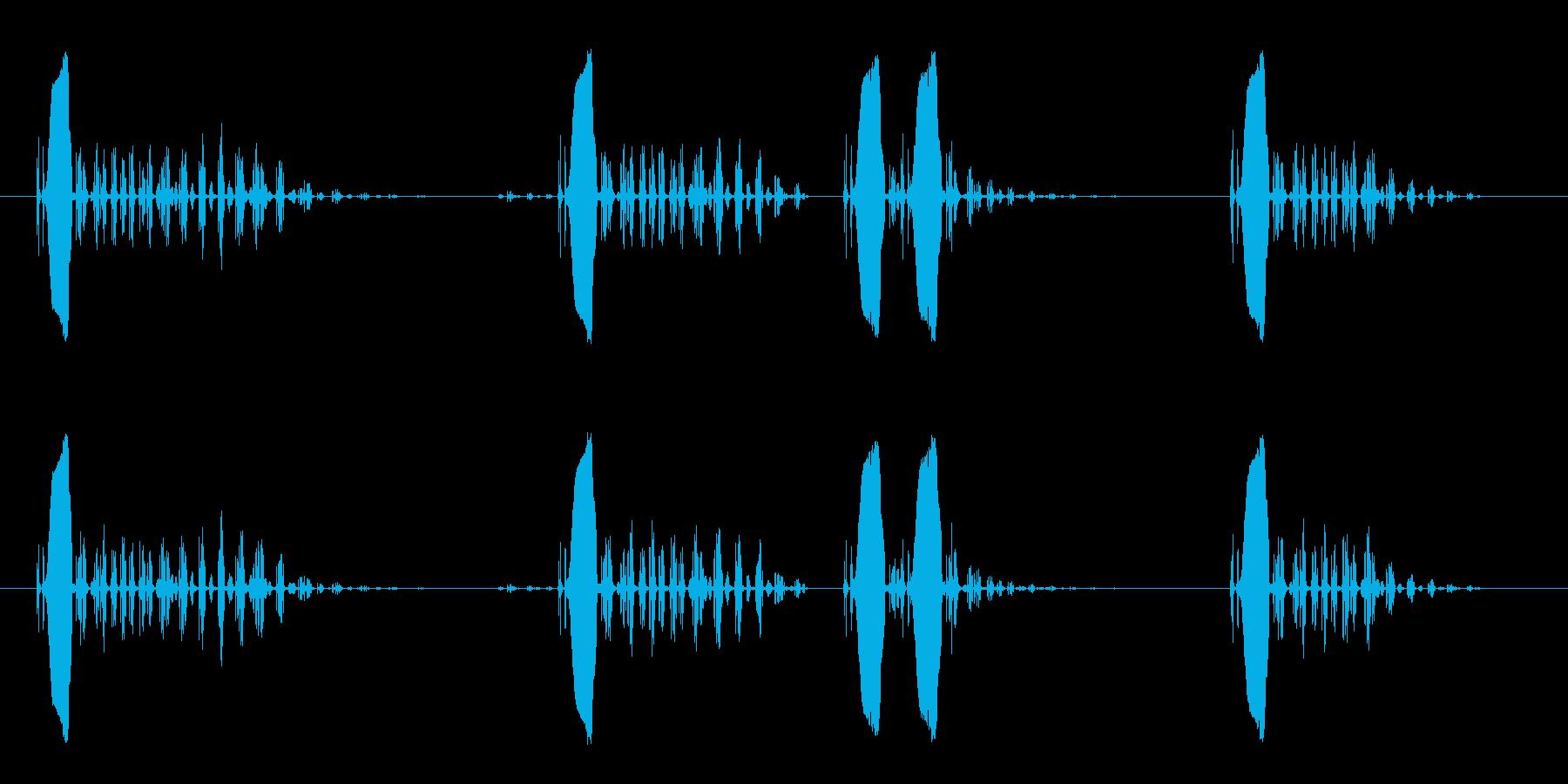 小鳥の鳴き声の効果音の再生済みの波形