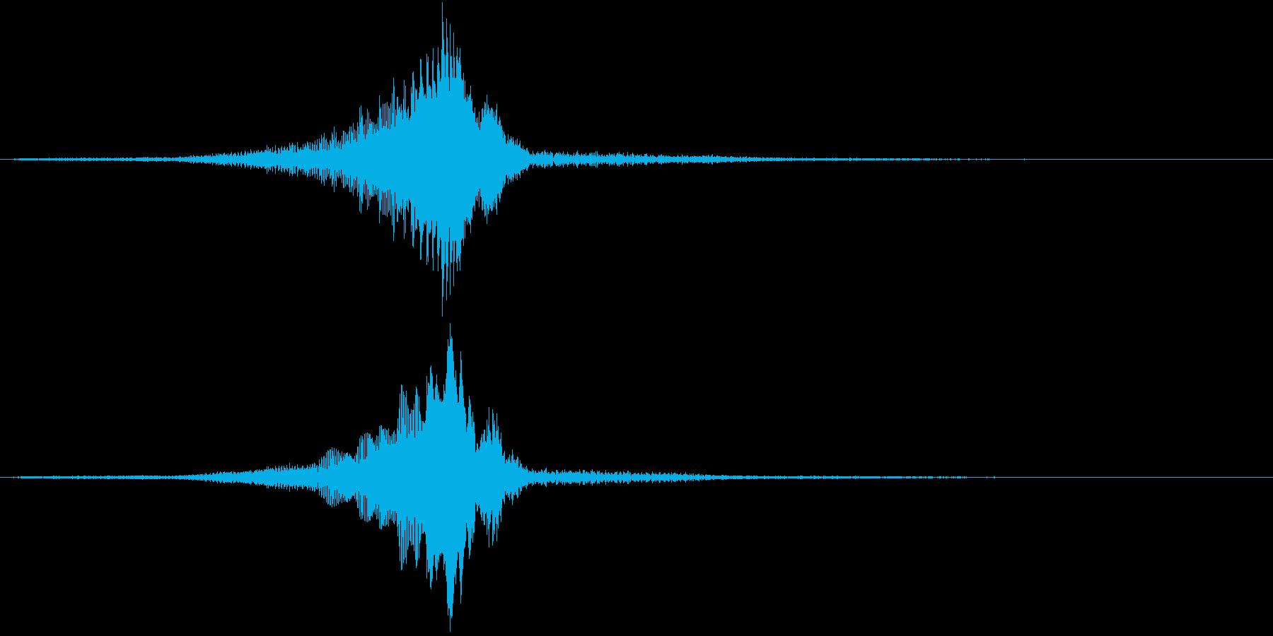 TV RADIO SFX12 解説/重要の再生済みの波形