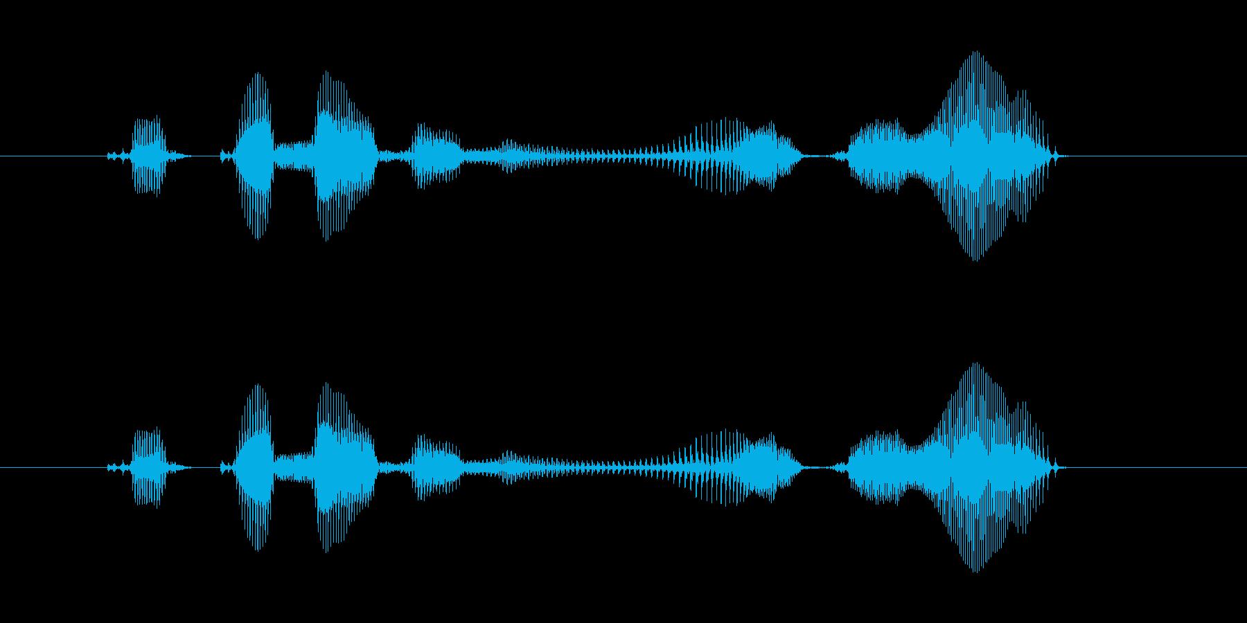 【ラジオ・パーソナリティ・ED】ここま…の再生済みの波形