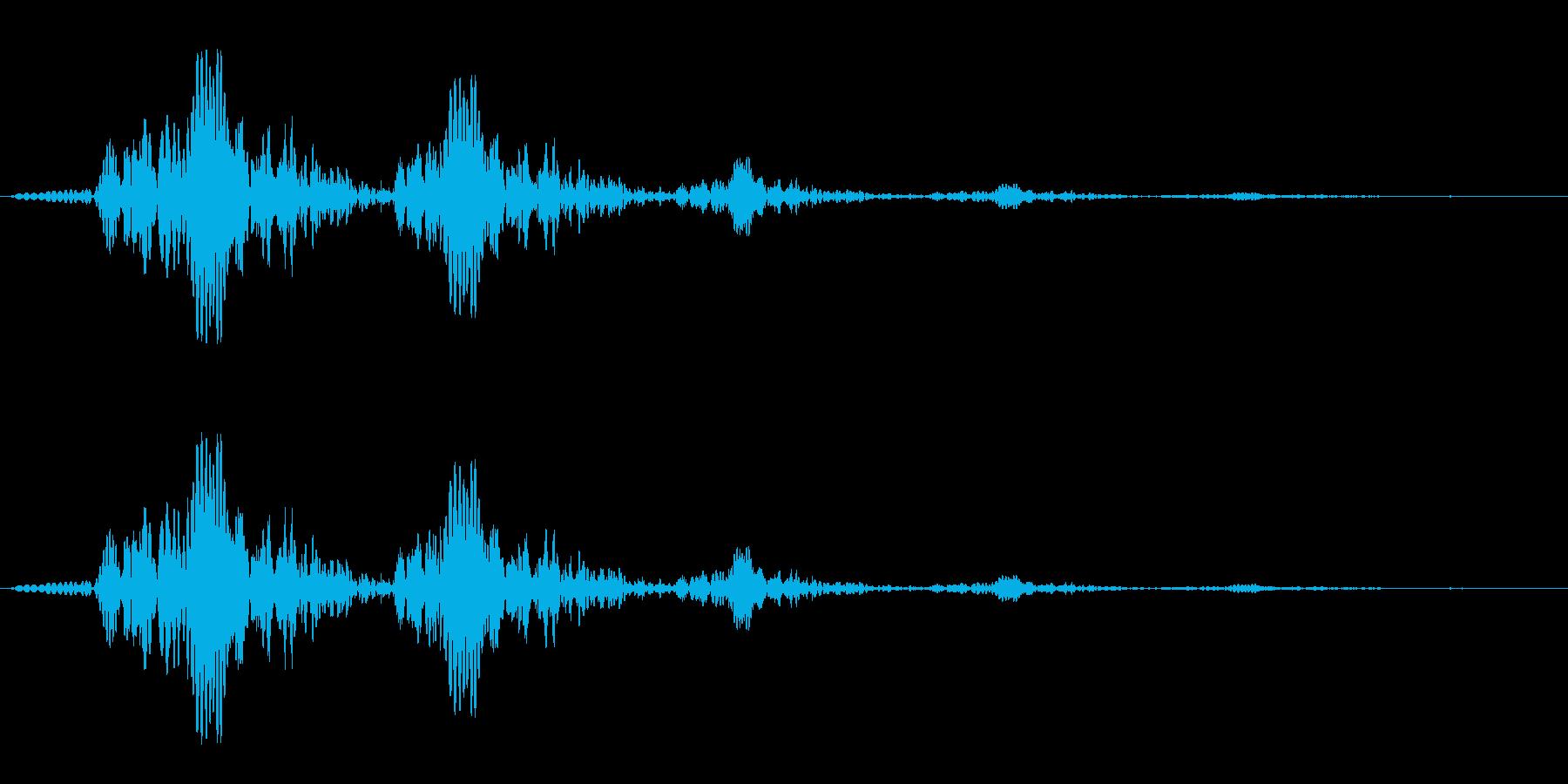 プワプワ(水中の音)の再生済みの波形