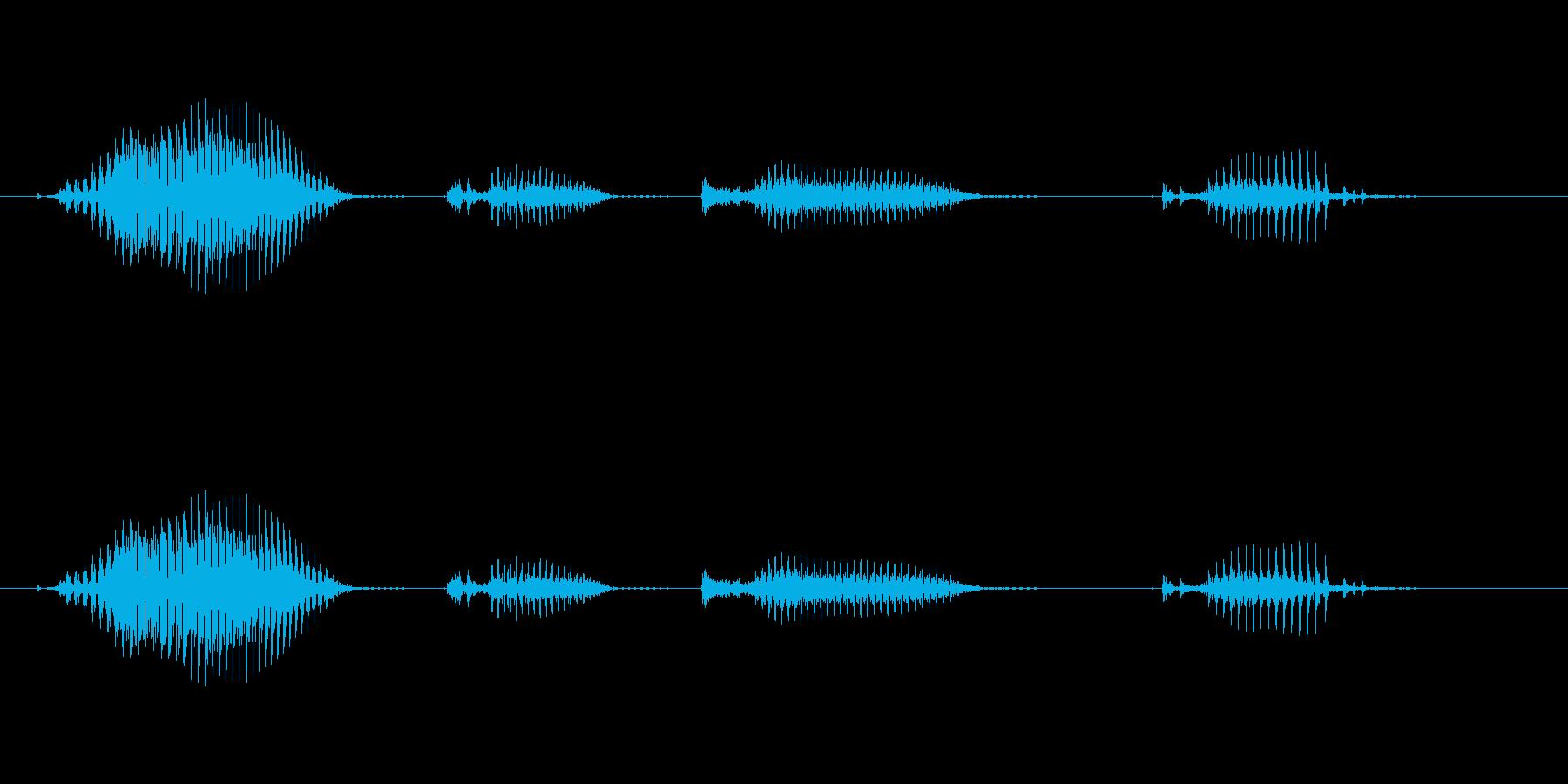 【日数・経過】8日経過の再生済みの波形