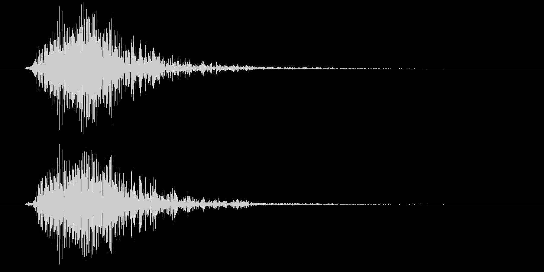 カリフォルニアアシカ(高めの声)の未再生の波形