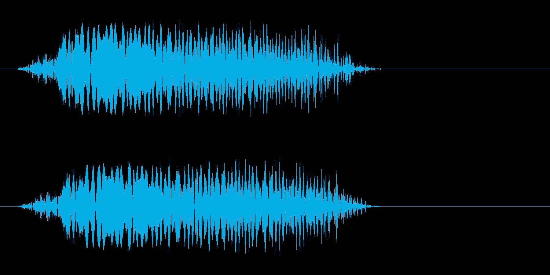 ピュ〜(飛んでいく)の再生済みの波形