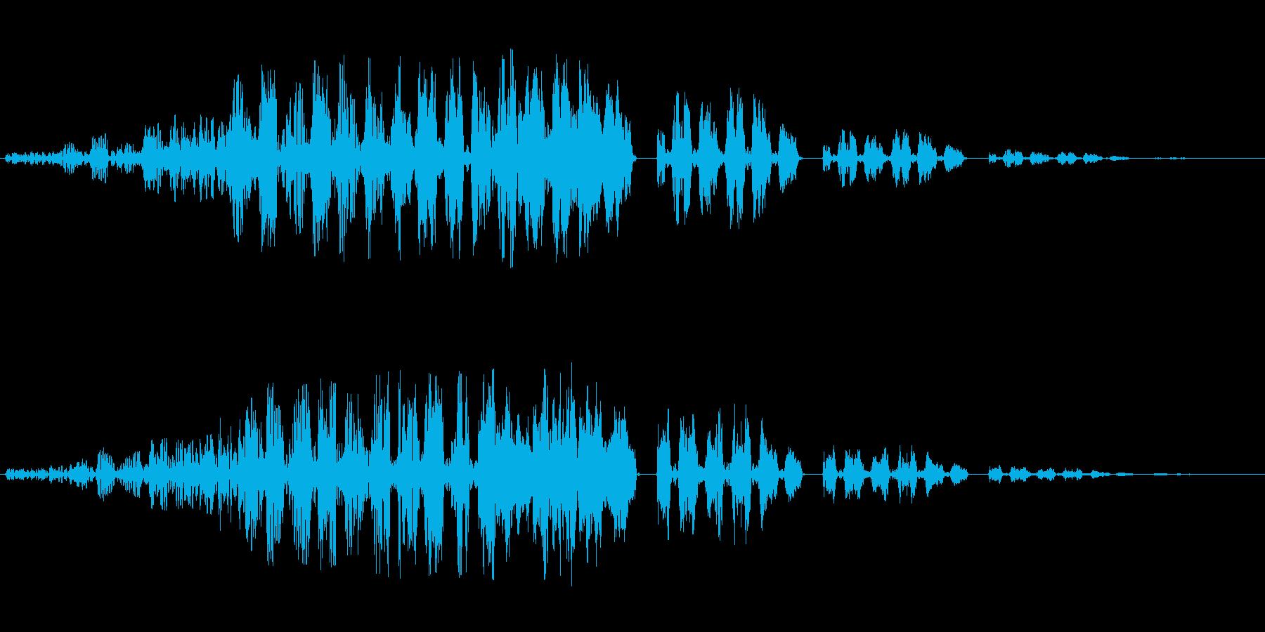 ブゥゥワワワン ブーワワワンの再生済みの波形