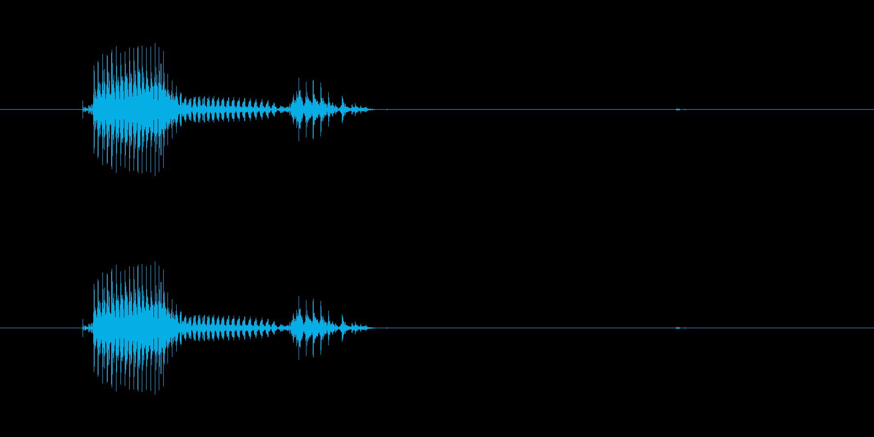 パンダの再生済みの波形
