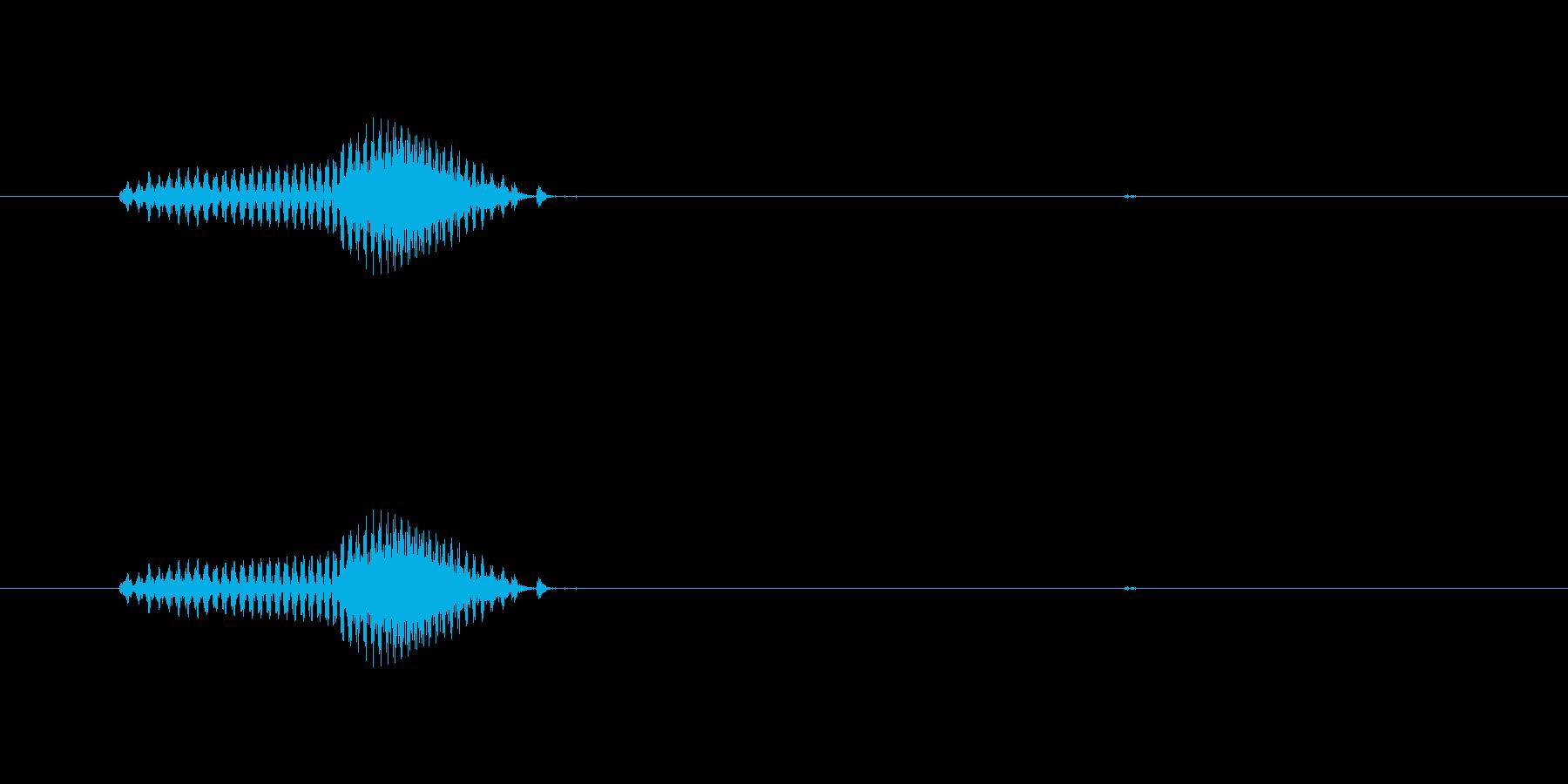 犬の再生済みの波形