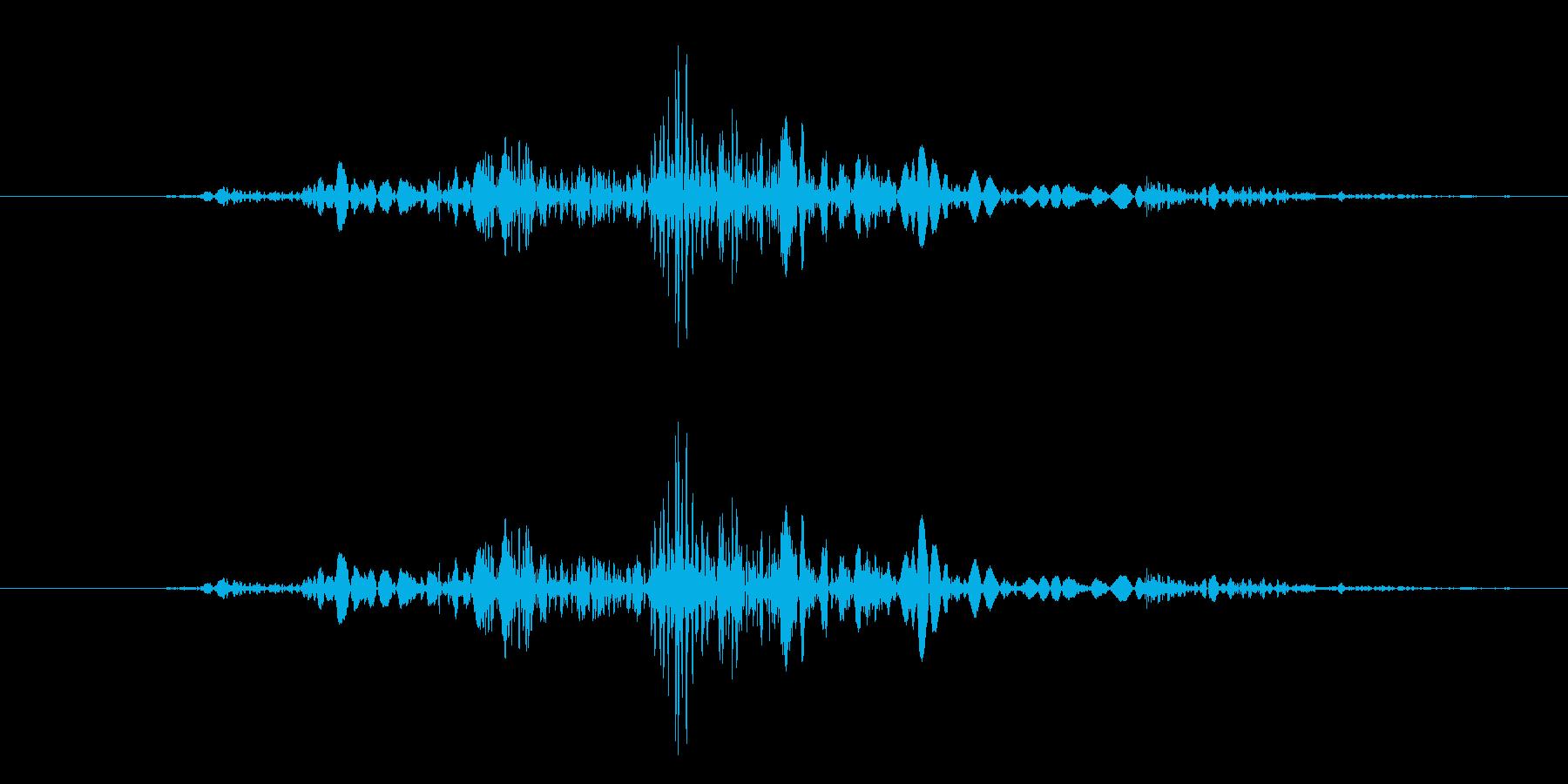 ガタッ【汎用的な物音】の再生済みの波形