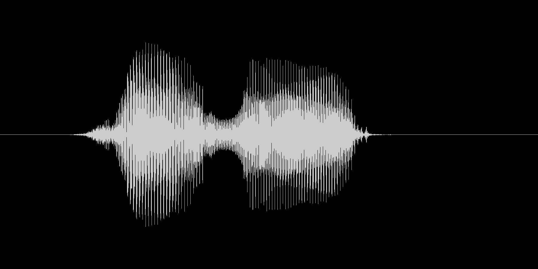 花の未再生の波形