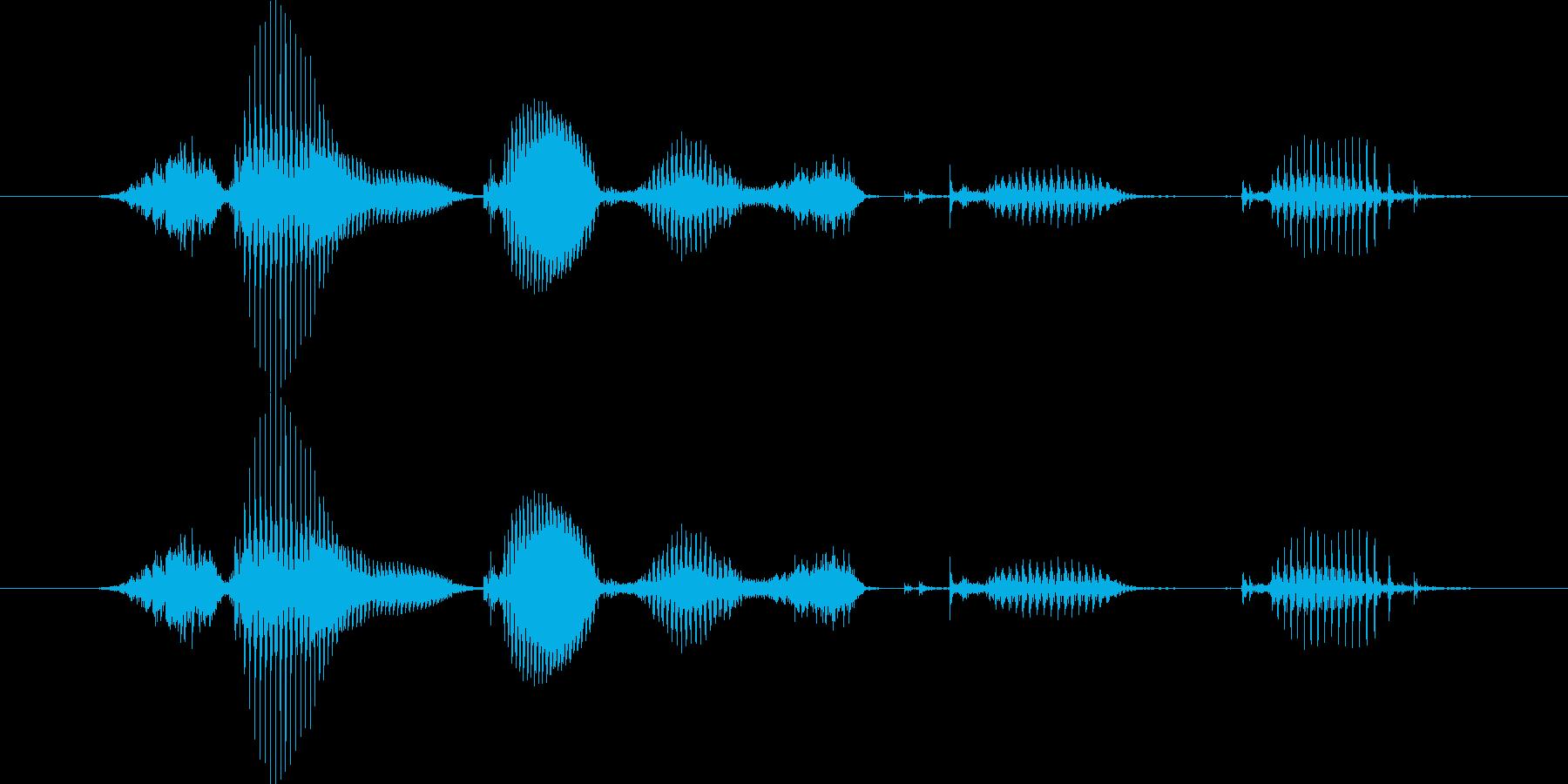 【日数・経過】3ヶ月経過の再生済みの波形