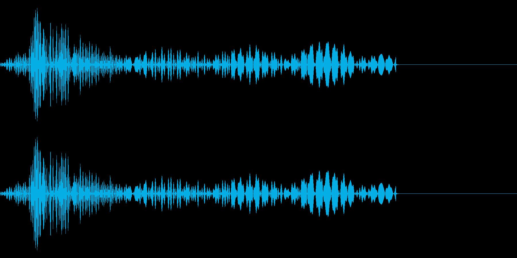 クリック音(「コッ」「カッ」)の再生済みの波形