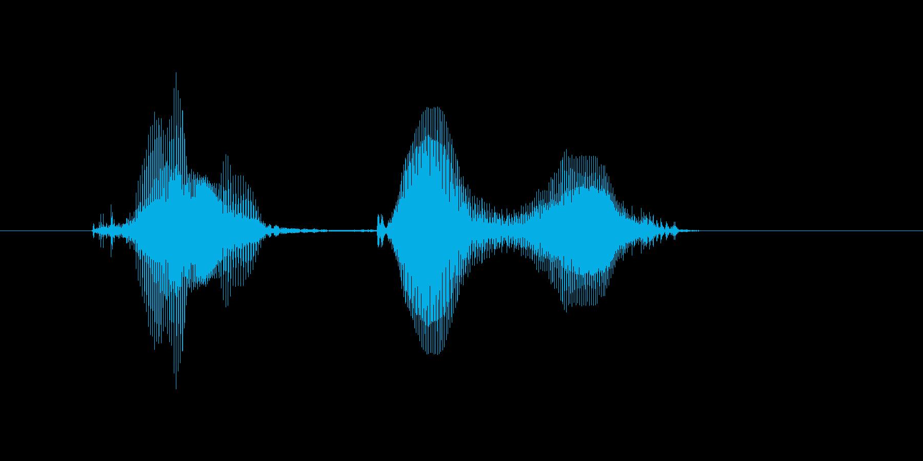 ギクぅの再生済みの波形