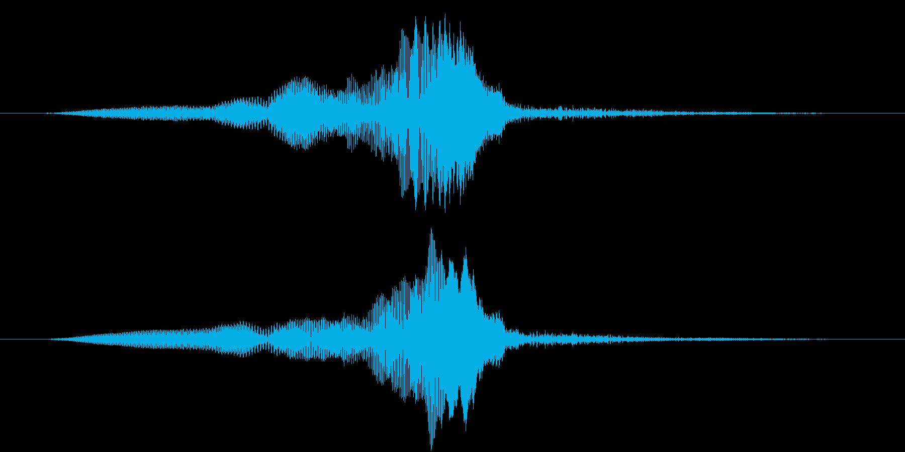 TV RADIO SFX11 ピックUPの再生済みの波形