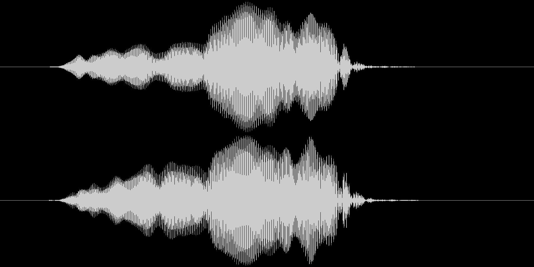 拭く、磨く キュウッ(低め)の未再生の波形