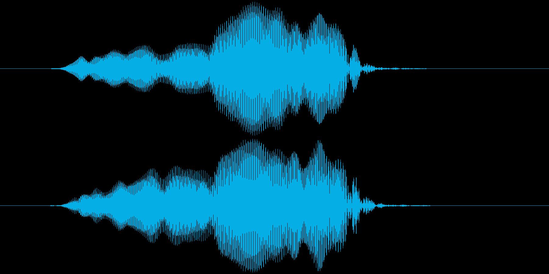 拭く、磨く キュウッ(低め)の再生済みの波形