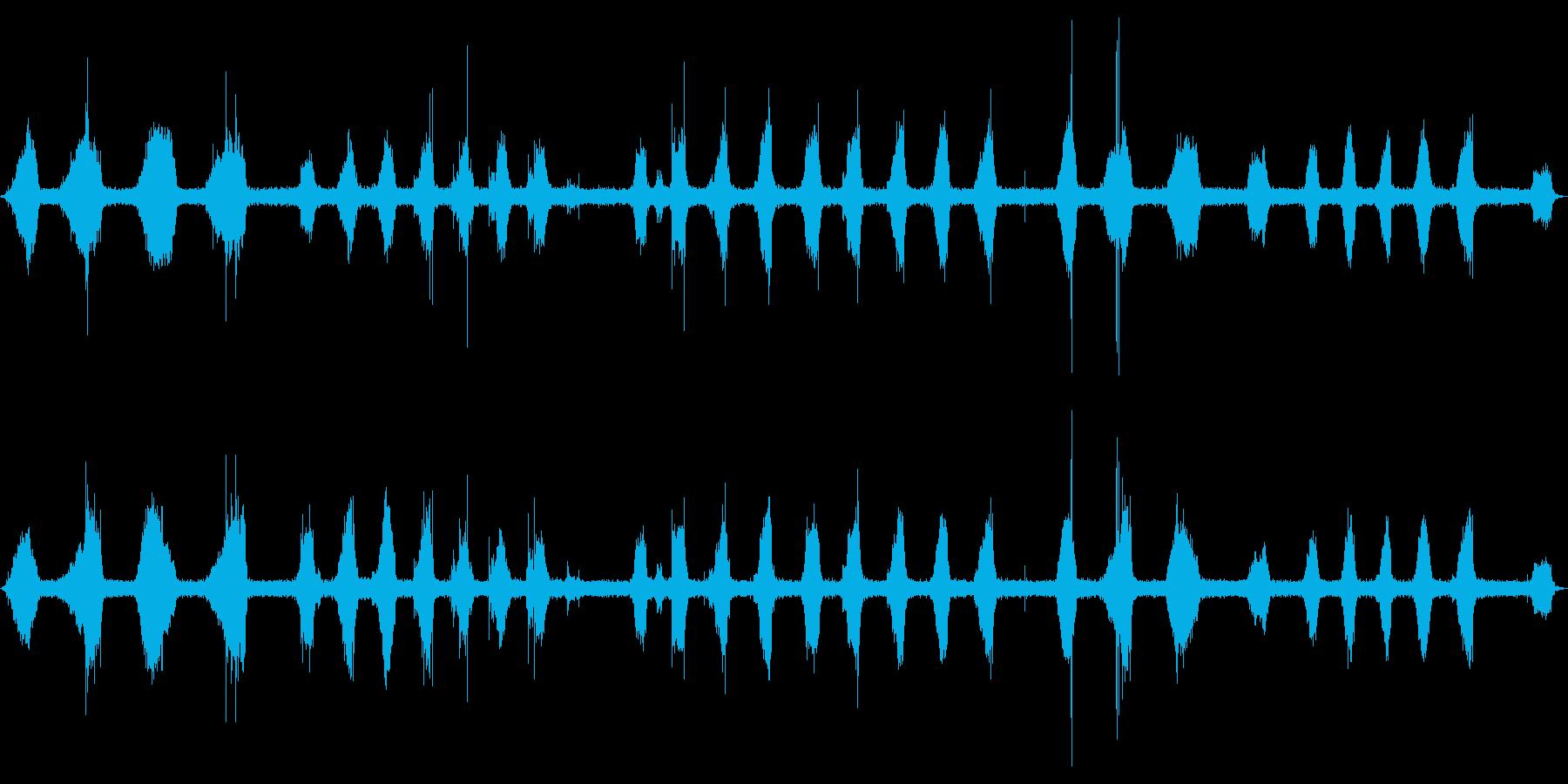【サッサッ…】ホウキで石床を掃く音_01の再生済みの波形