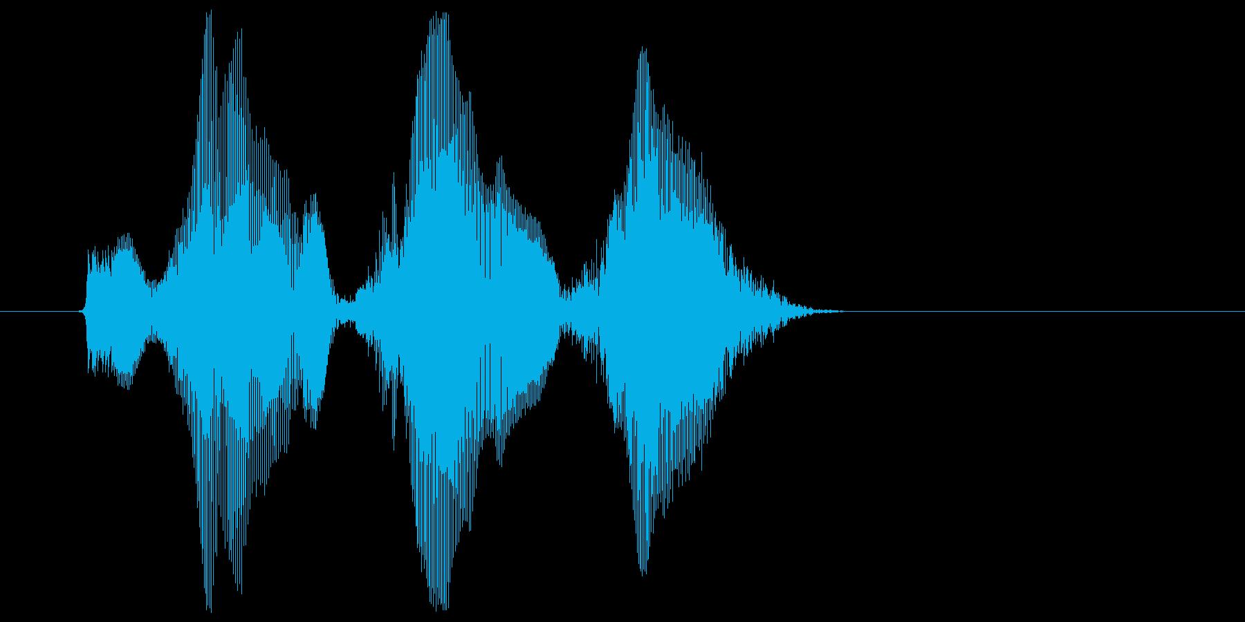 「ウハウハウハ」の再生済みの波形