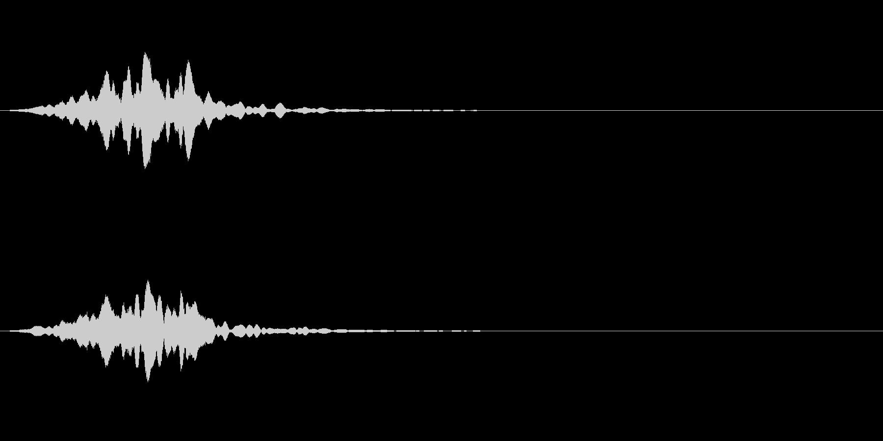 フワーン:サウンドロゴなどにどうぞの未再生の波形