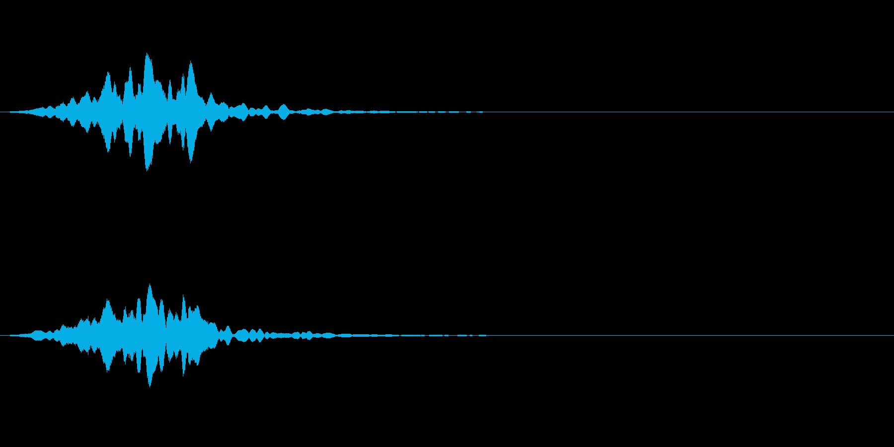フワーン:サウンドロゴなどにどうぞの再生済みの波形