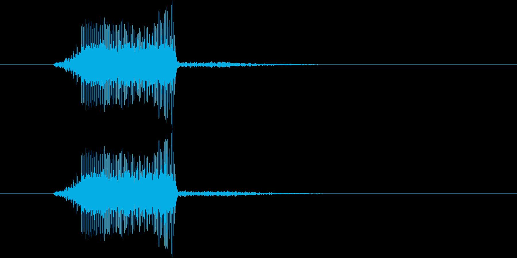 キュッっとハムスターの鳴き声みたいな音の再生済みの波形