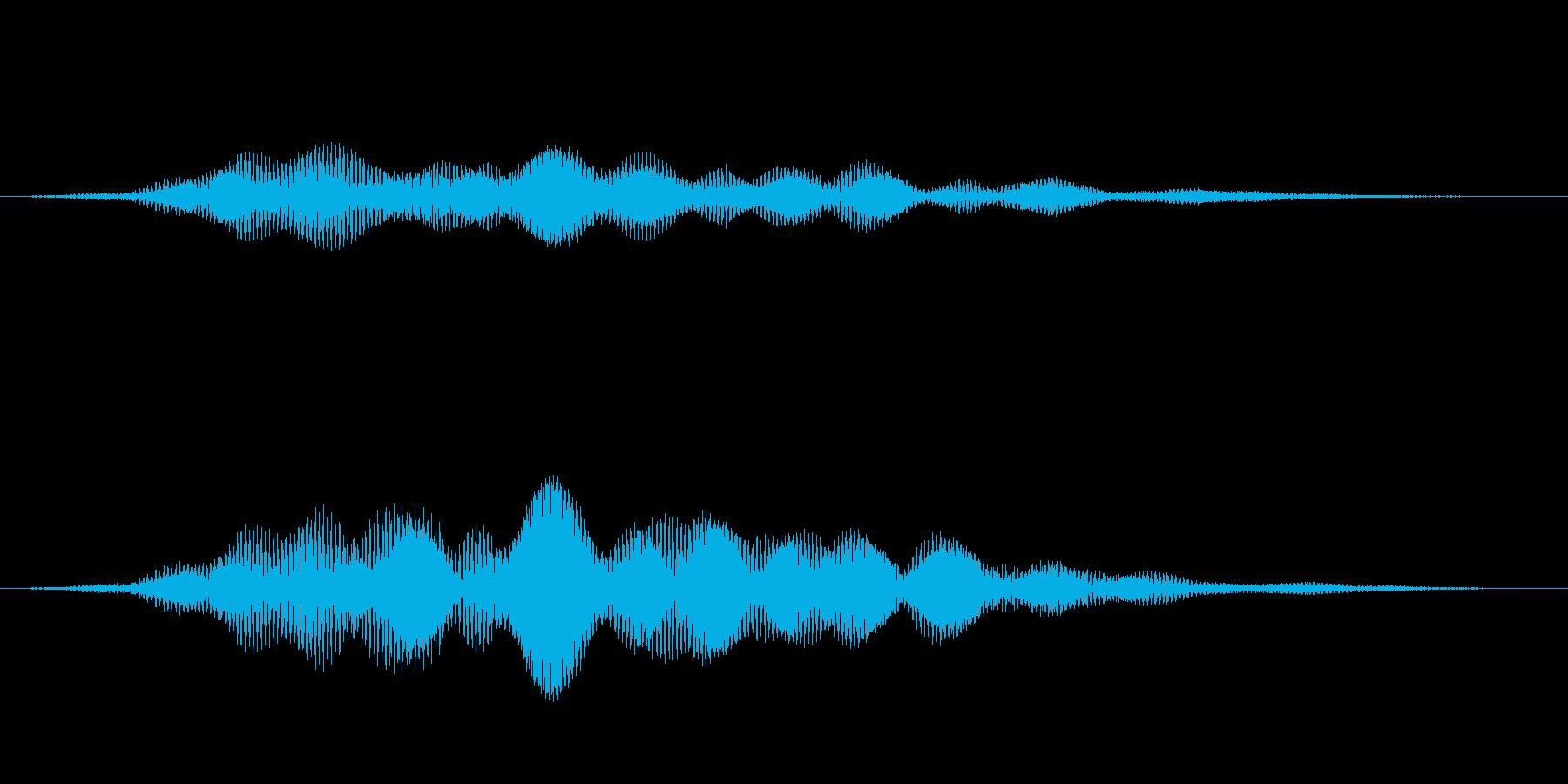 ブワーン(Other_Logo02-2)の再生済みの波形