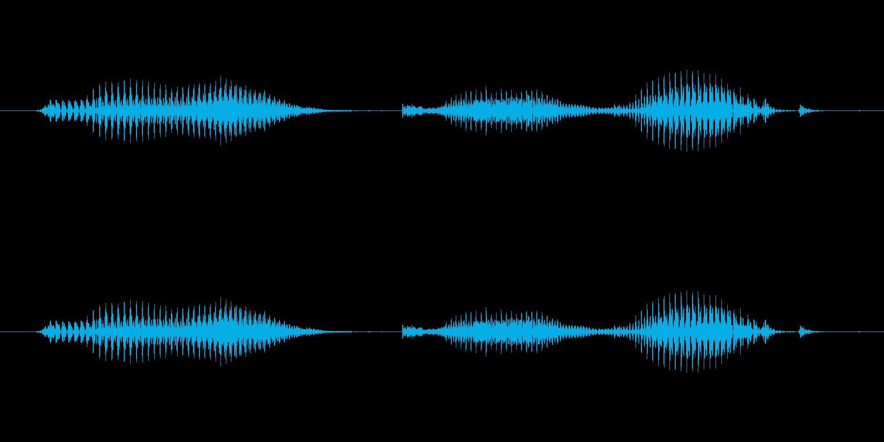 【日数・後】6日後の再生済みの波形