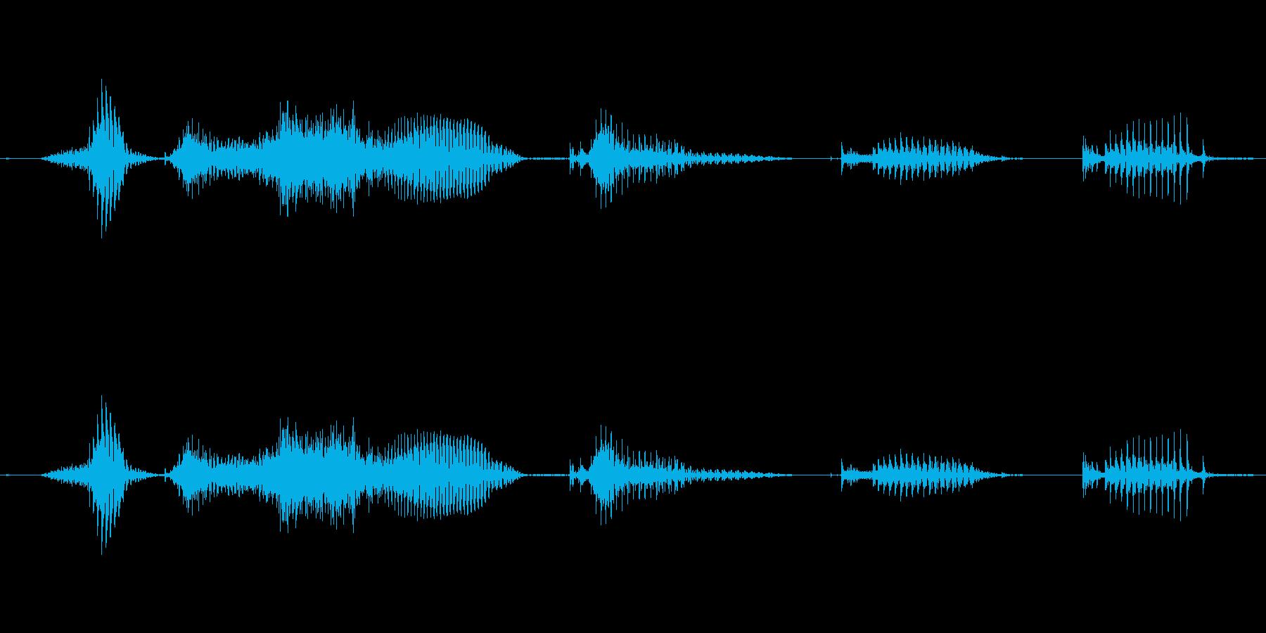 【日数・経過】8週間経過の再生済みの波形