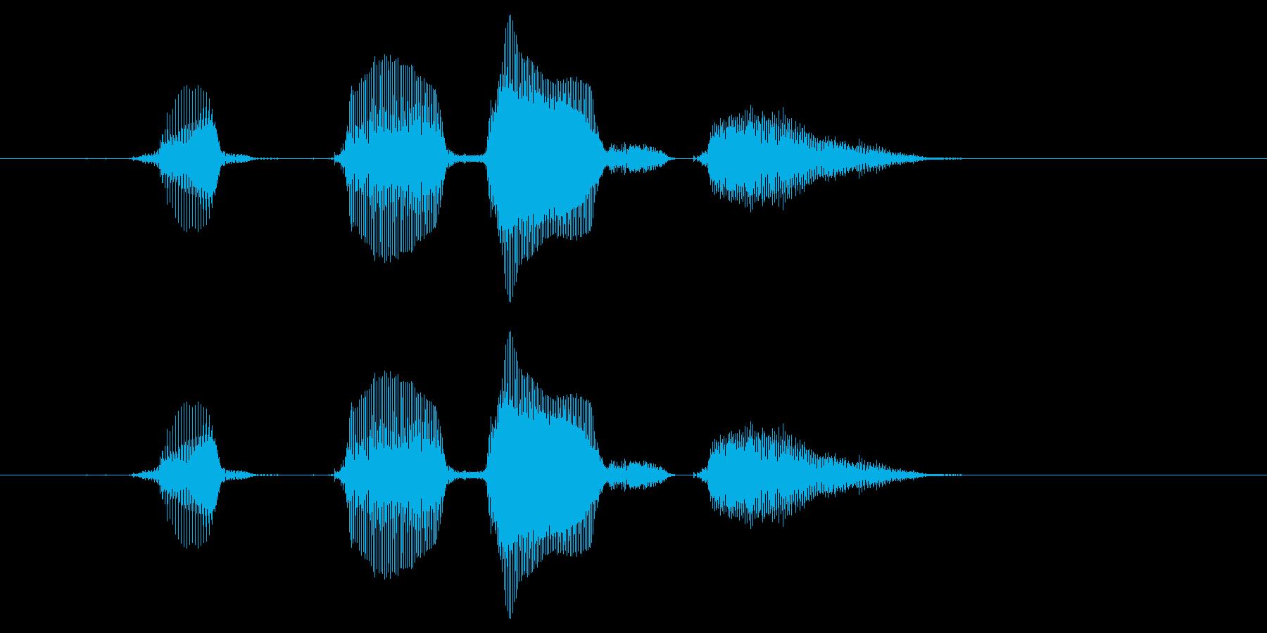 【行事・イベント・挨拶】はっぴーばーす…の再生済みの波形