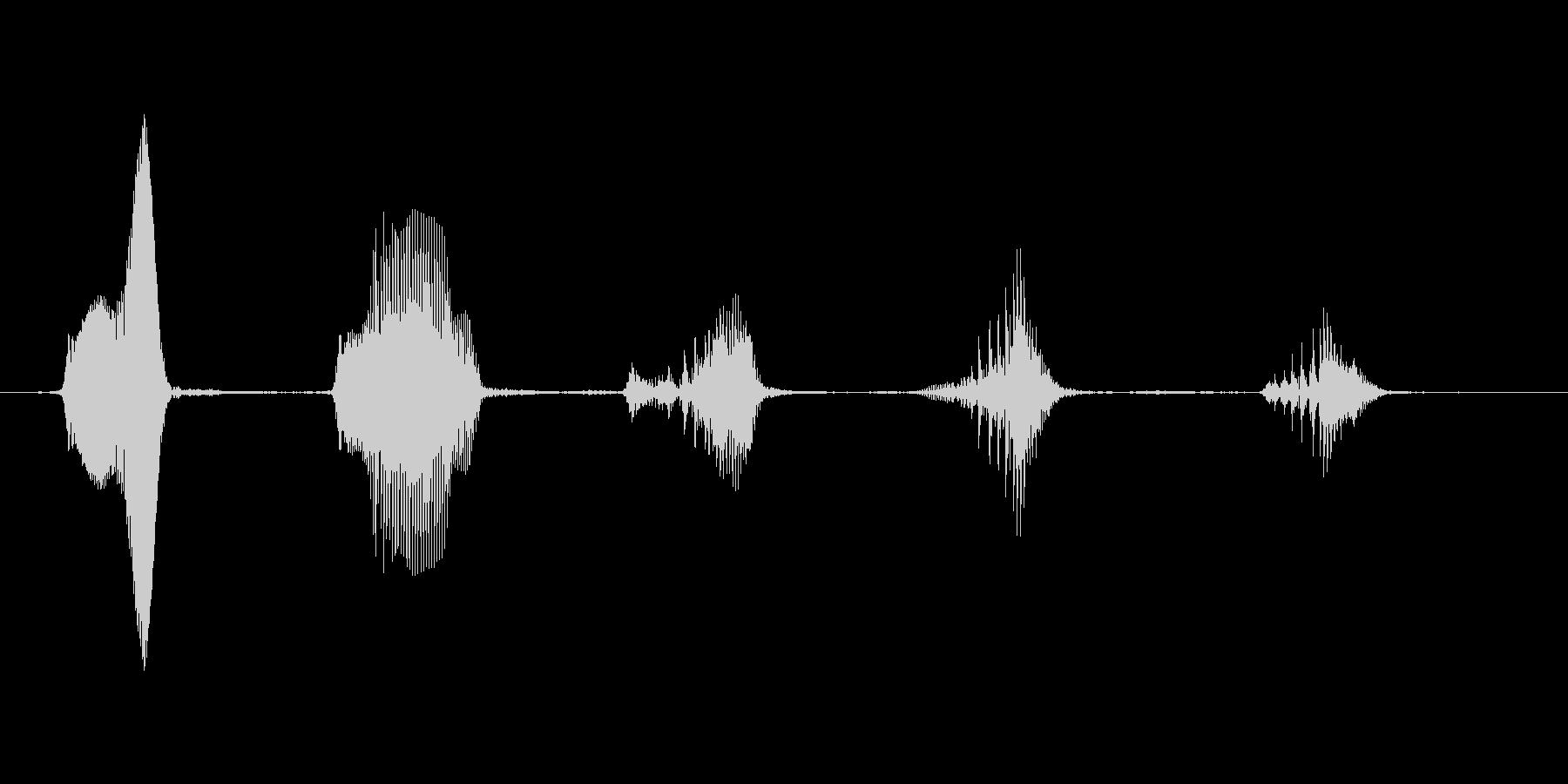 【笑い声】ほっほっほ(短め)の未再生の波形