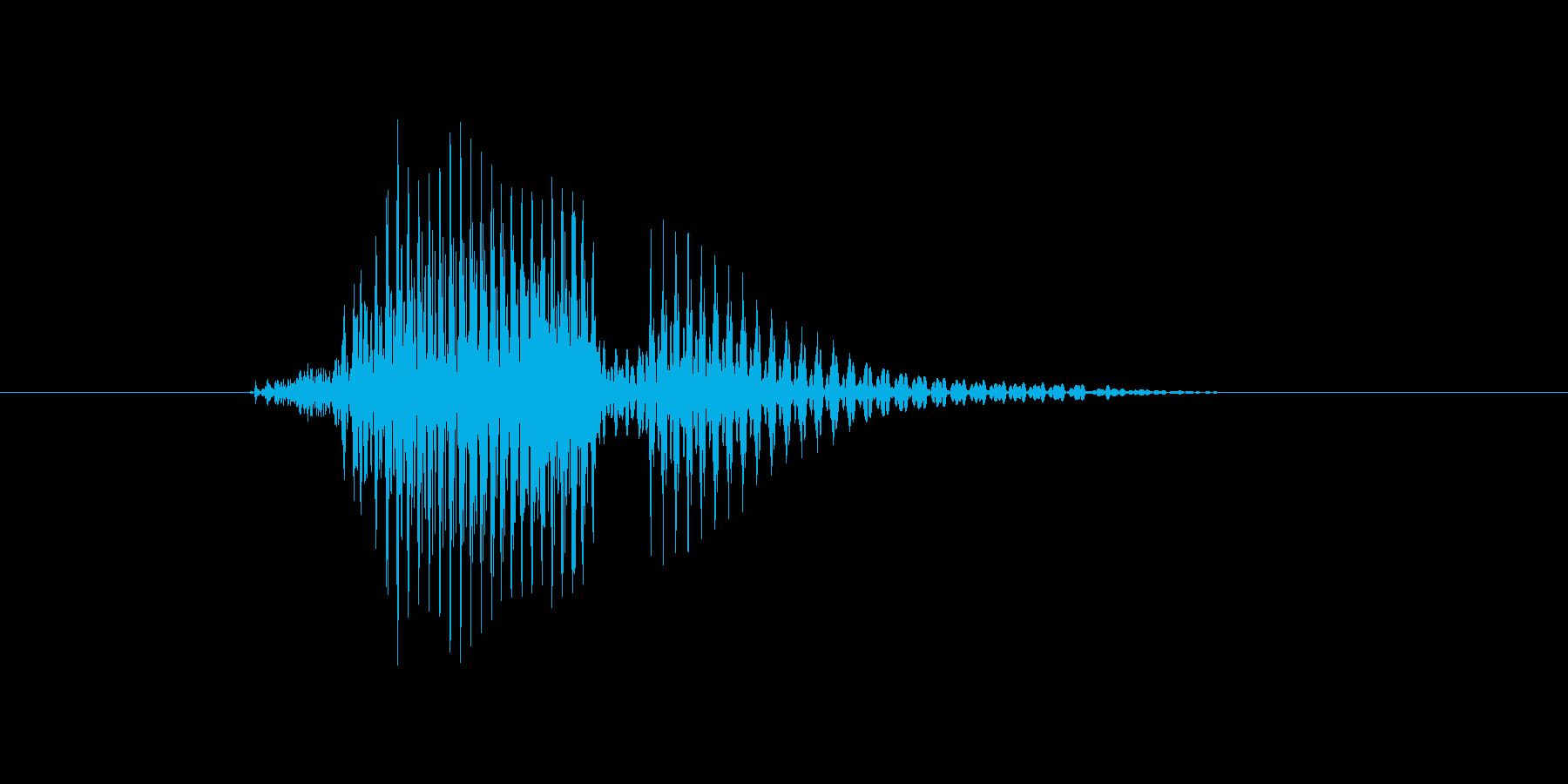 キャリーの再生済みの波形