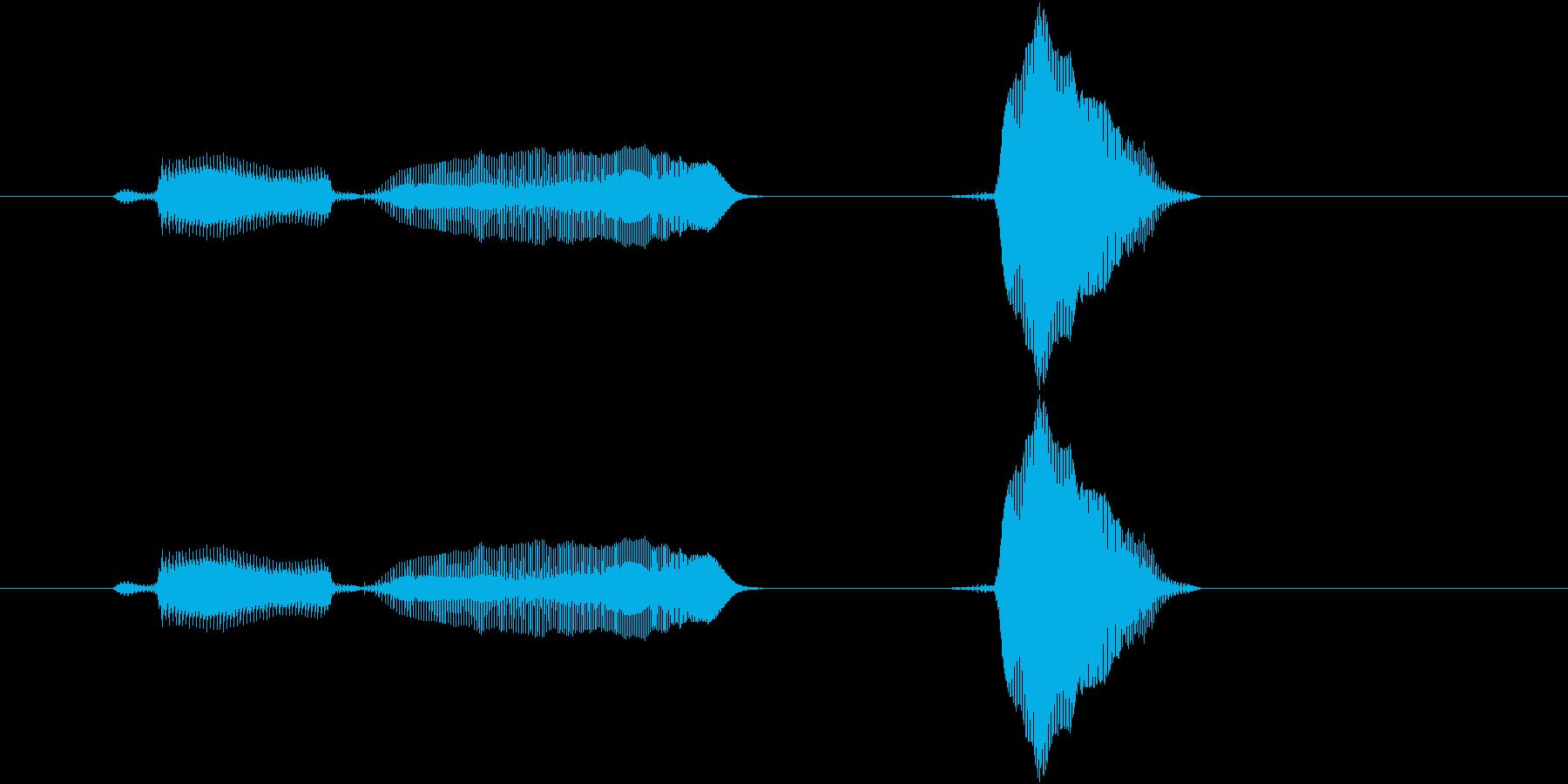 レディー、ファイ!の再生済みの波形