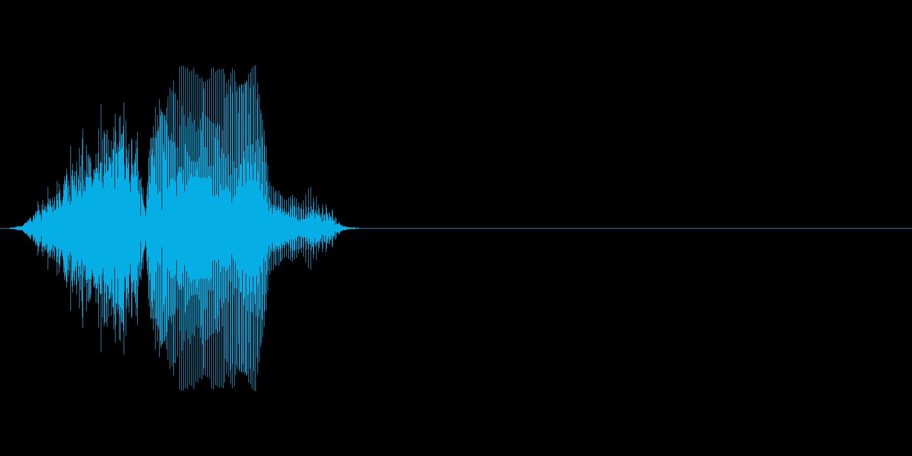 1,000(せん)の再生済みの波形