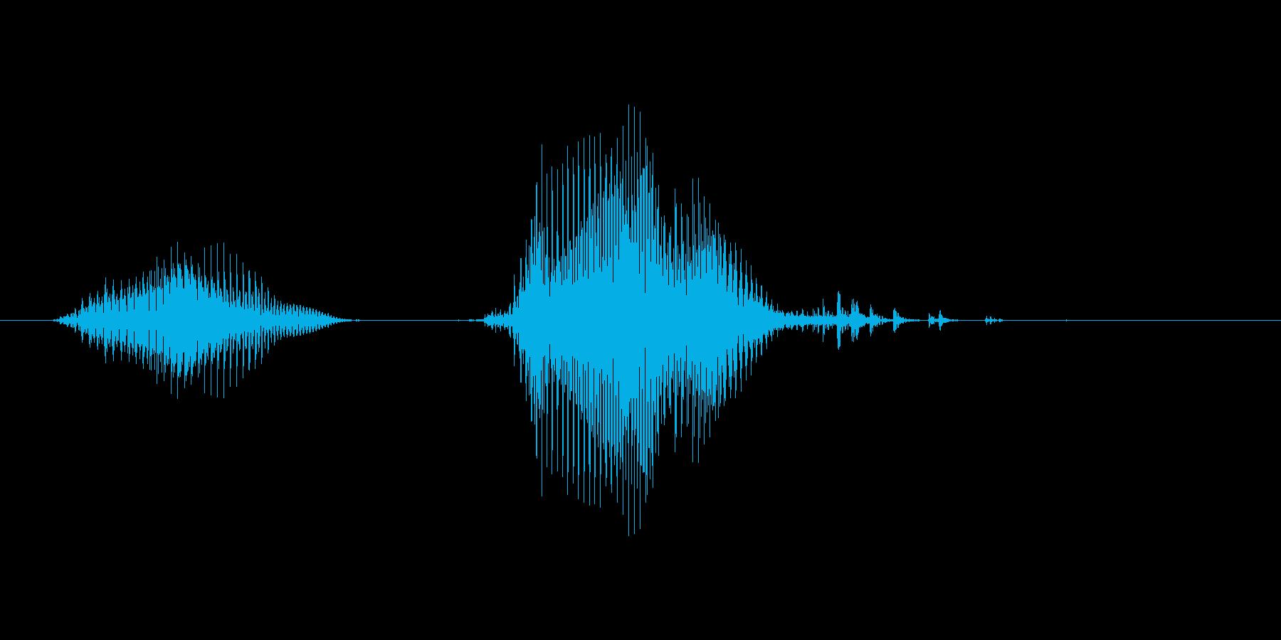 いたっ!(Type-A)の再生済みの波形