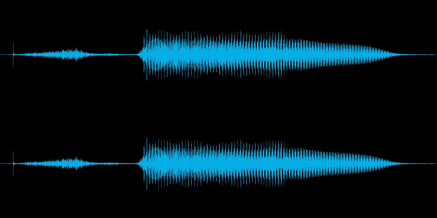 (女性)ドイツ語 数字2 ツヴァイの再生済みの波形