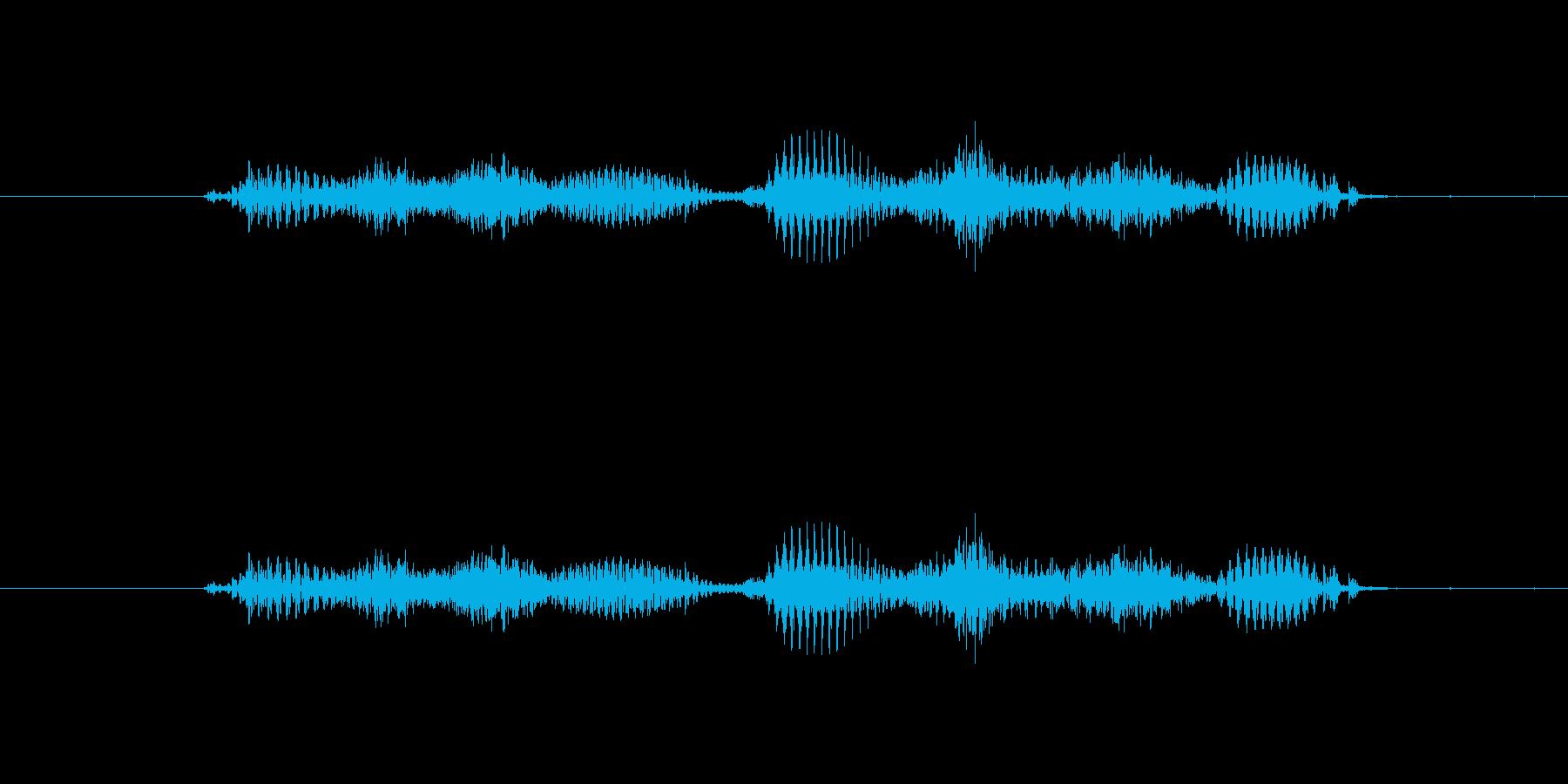 【干支】ウシ年の再生済みの波形