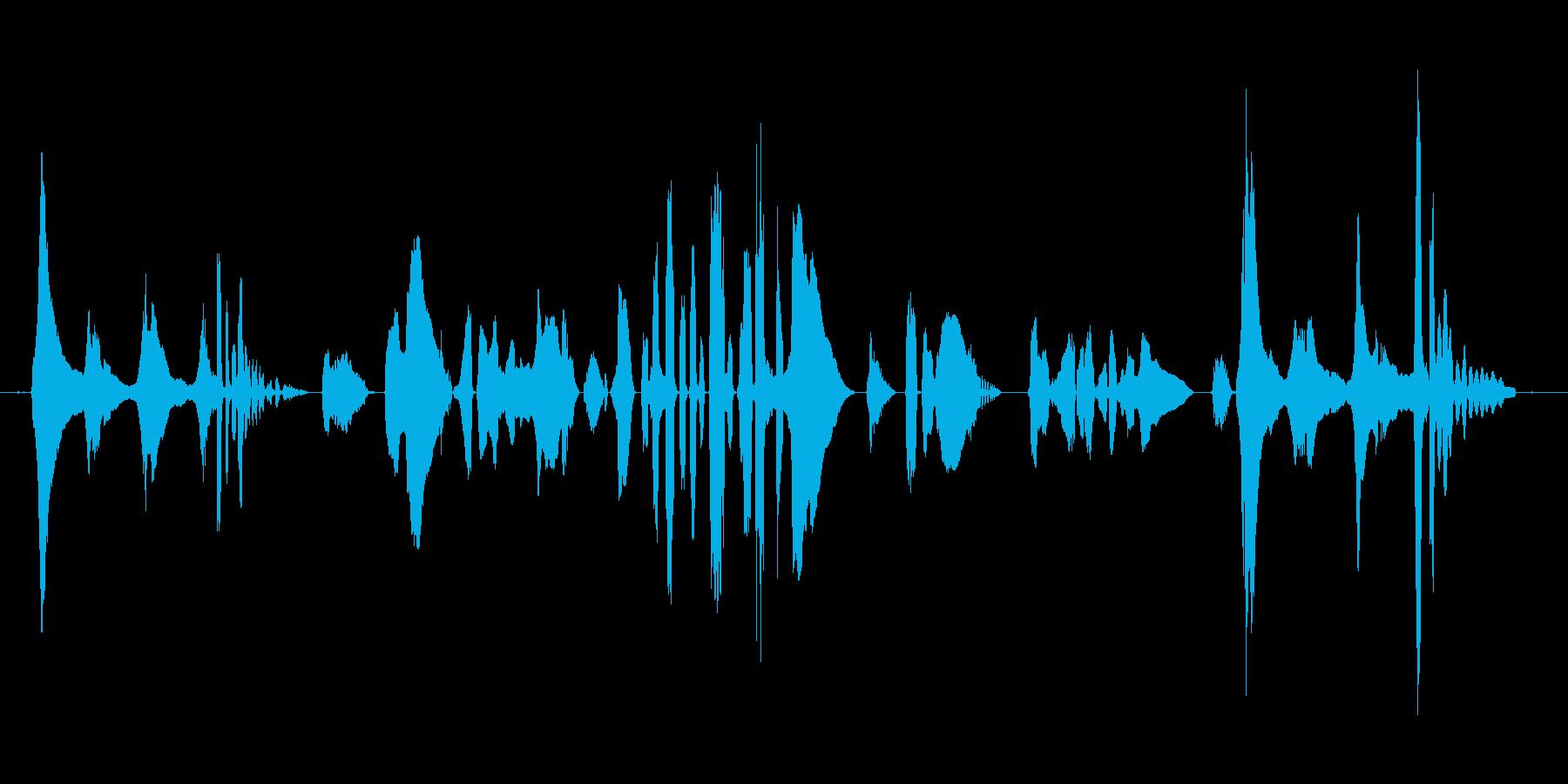 (猫の鳴き声+人間の言葉)の再生済みの波形