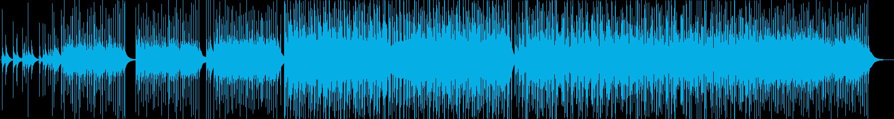 怪しげな民族風BGMの再生済みの波形