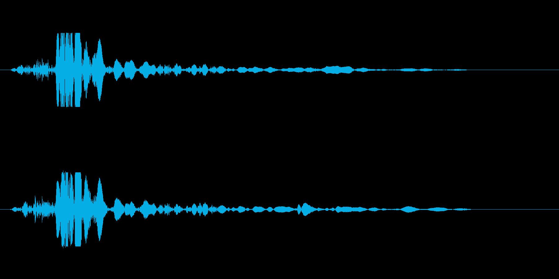 バタン、ドスン(破裂音、落下音)の再生済みの波形