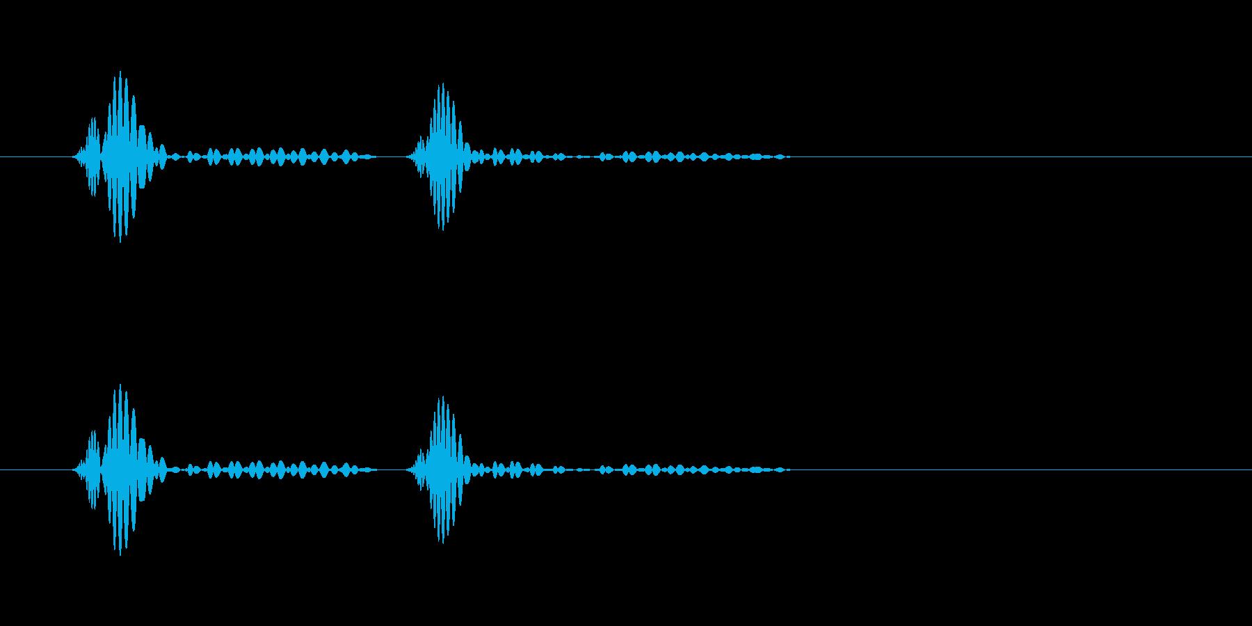 ドクン…という心臓の鼓動の音の再生済みの波形