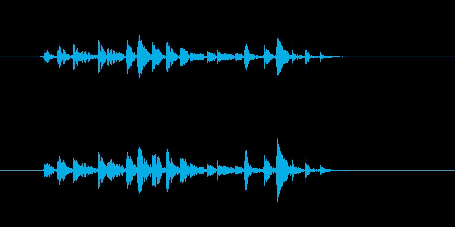 生音 三味線 チリチリ アップの再生済みの波形