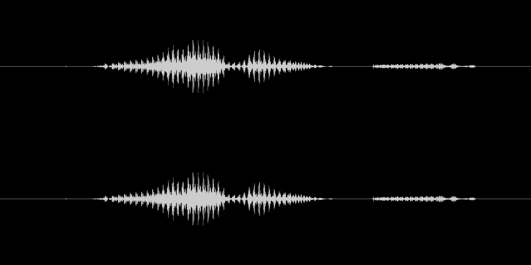 うわばきの未再生の波形