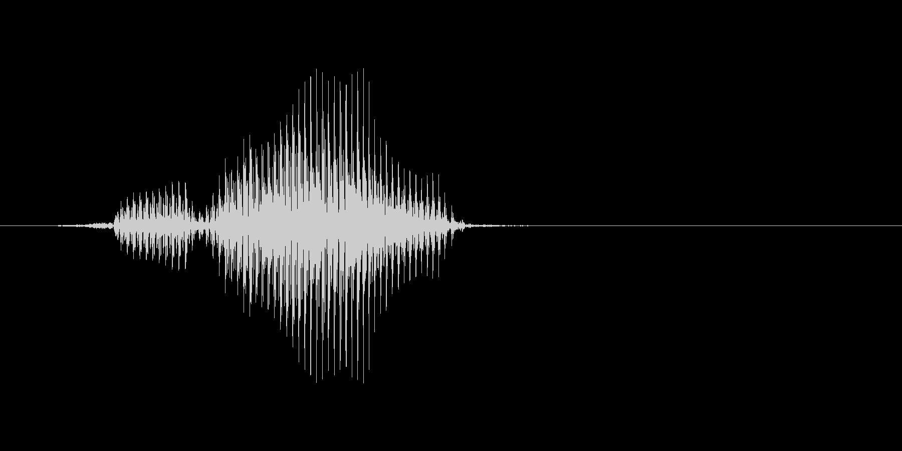 フライの未再生の波形