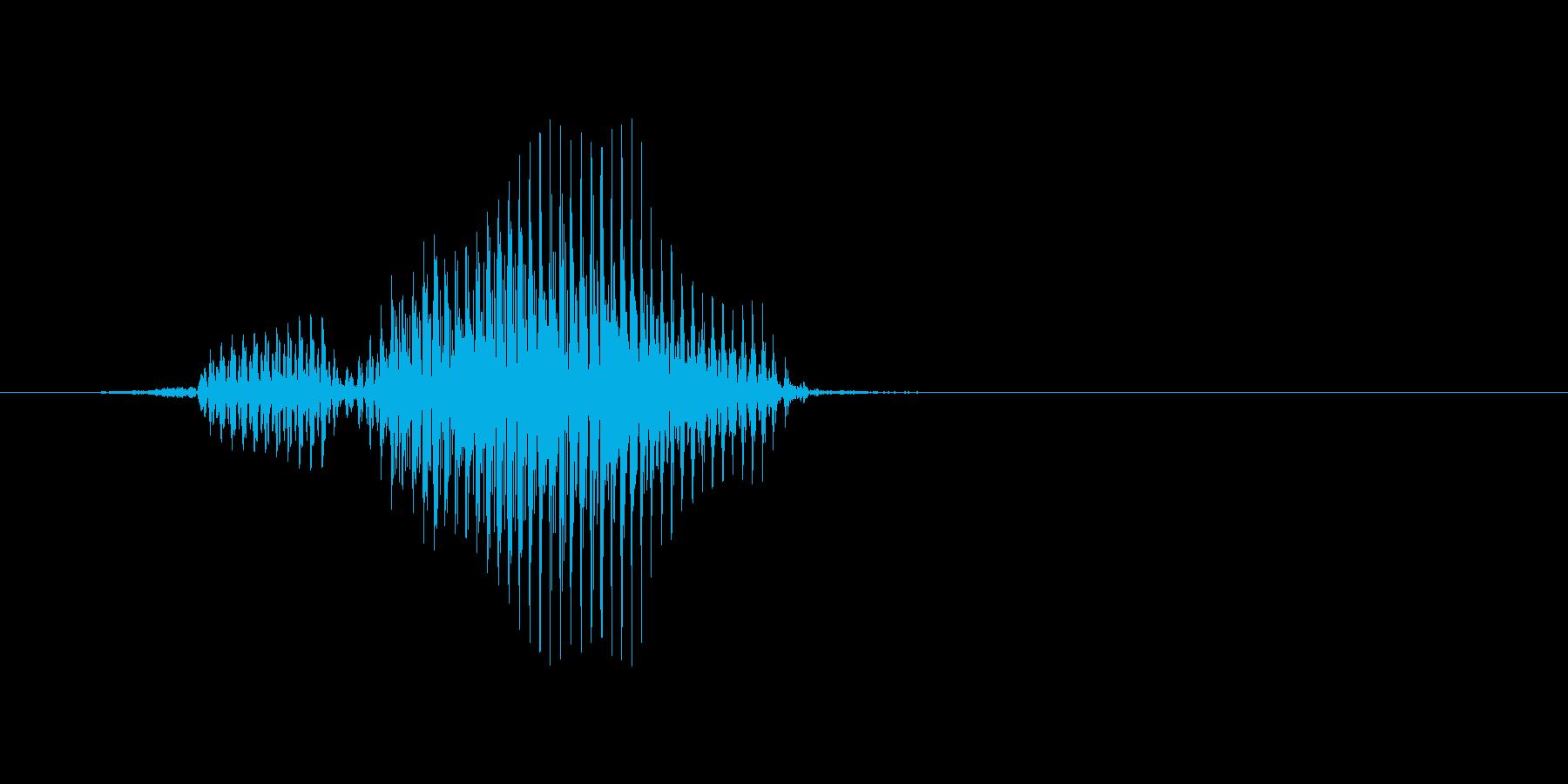 フライの再生済みの波形