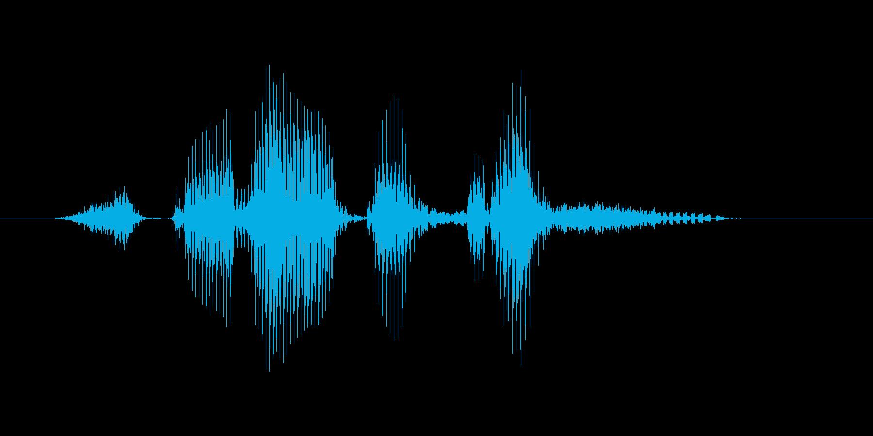 ストレートフラッシュの再生済みの波形