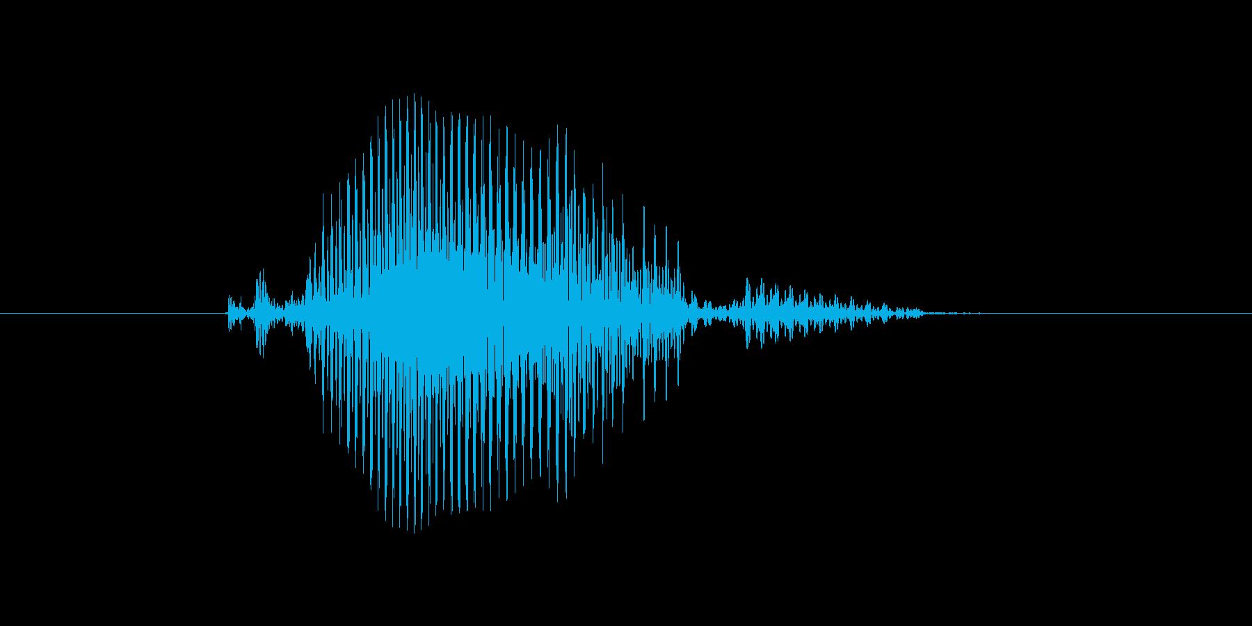 コールの再生済みの波形