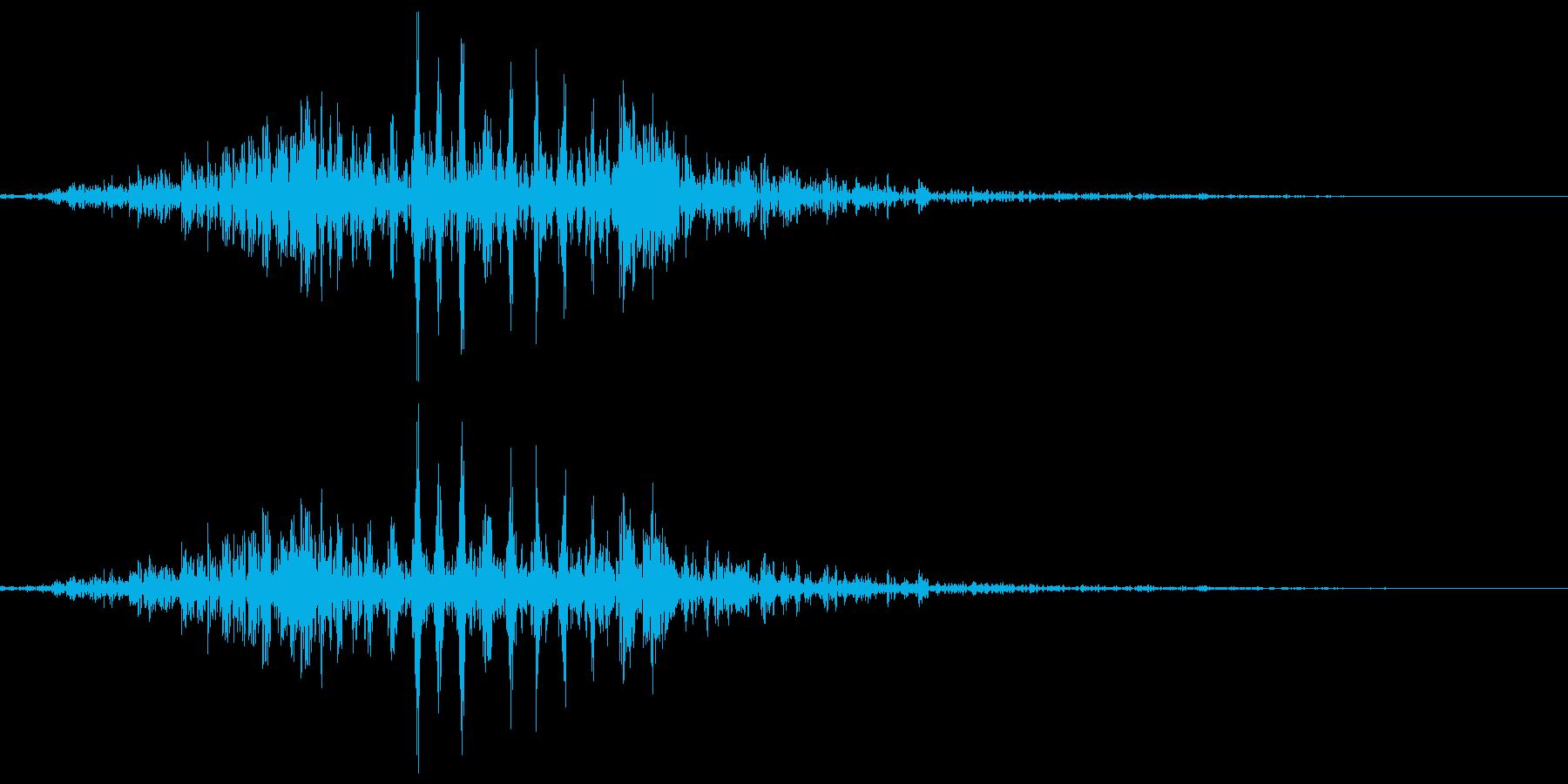 カエル、蛙の鳴き声(一鳴き) クアッの再生済みの波形